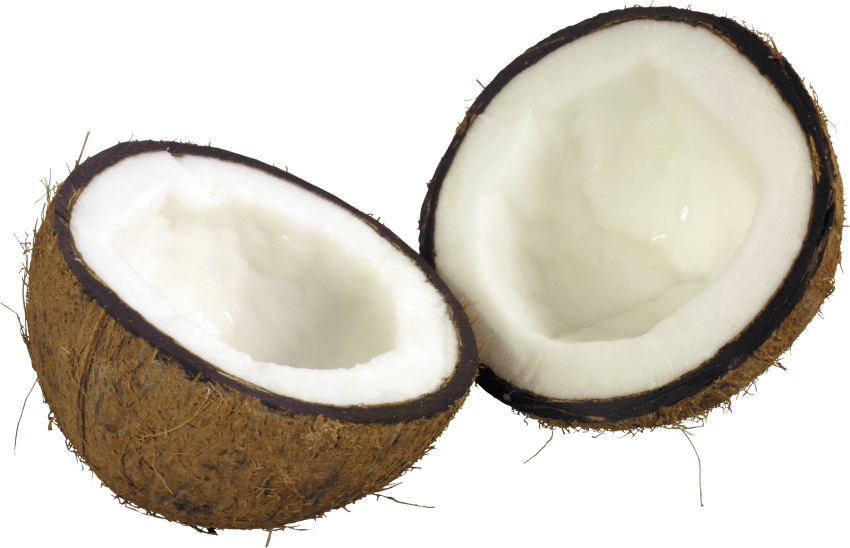 Drink clipart coconut. Png free images toppng