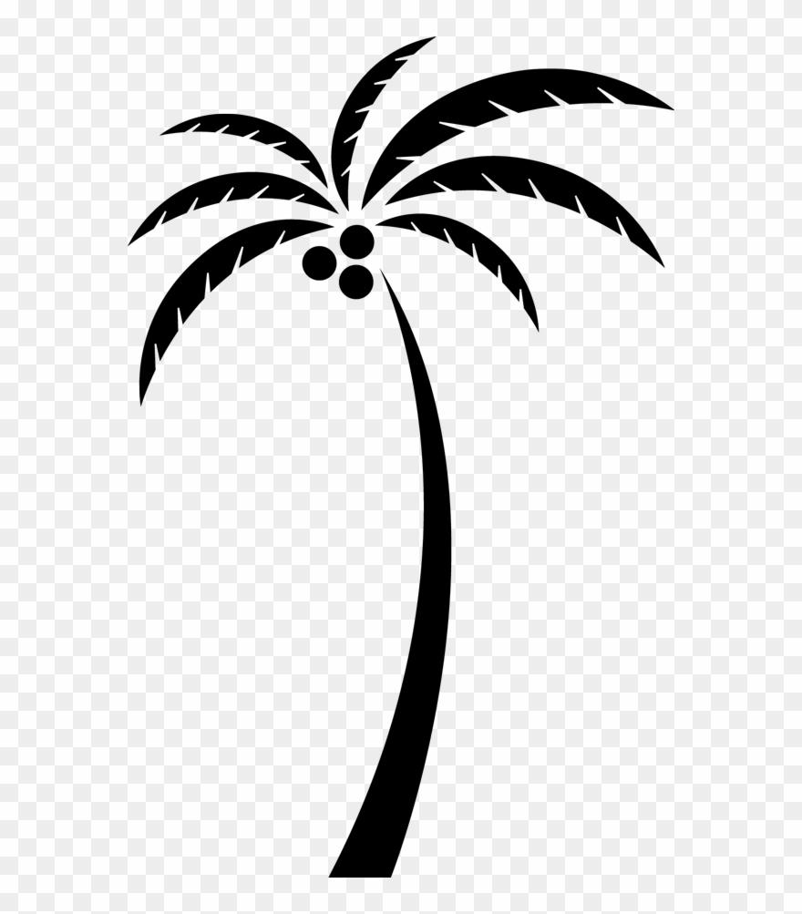 Arecaceae tree clip art. Coconut clipart simple