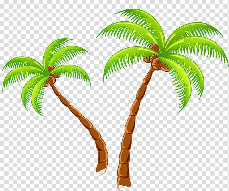 Coconut clipart tropical coconut. Islands resort tree transparent