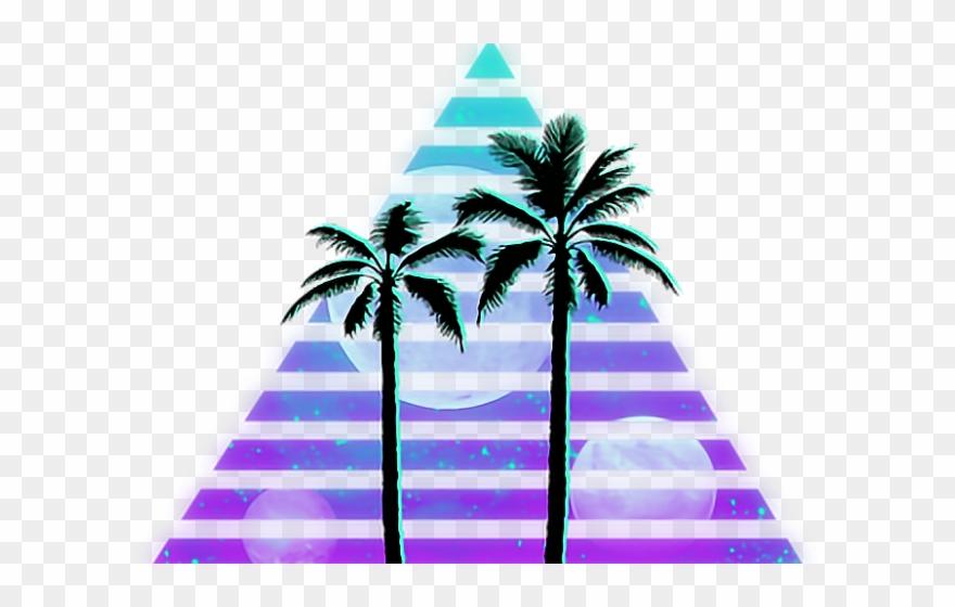 Palm tree silhouette . Coconut clipart tumblr transparent