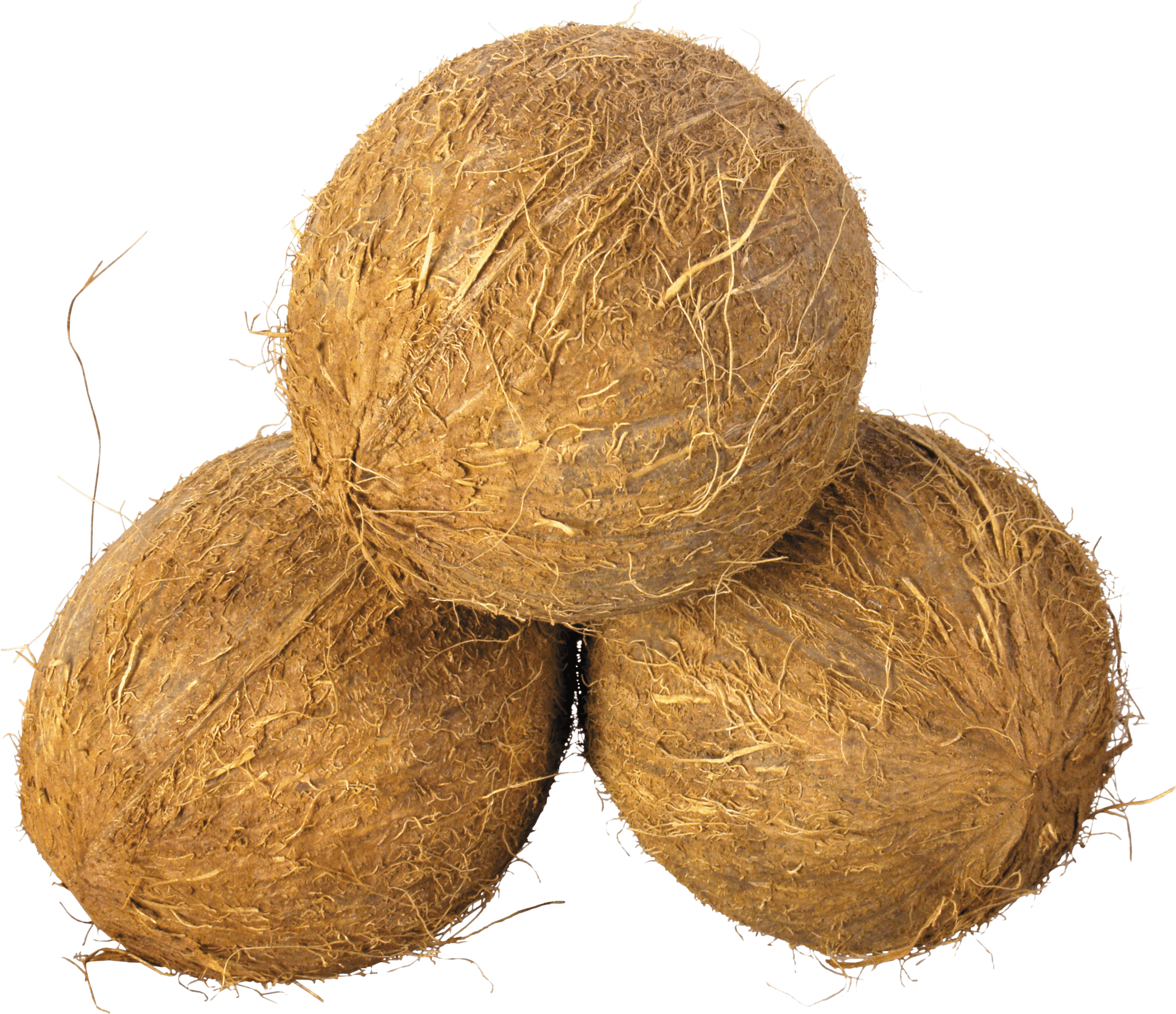 Coconut clipart tumblr transparent. Trio png stickpng