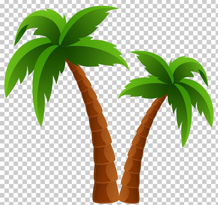 Coconut clipart two tree. Arecaceae png cartoon