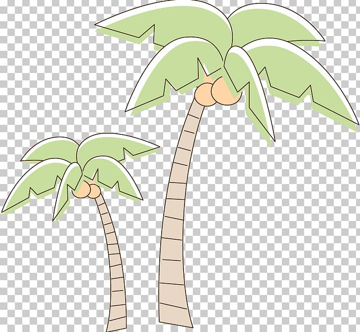 Coconut clipart two tree. Drawing png arecaceae cartoon