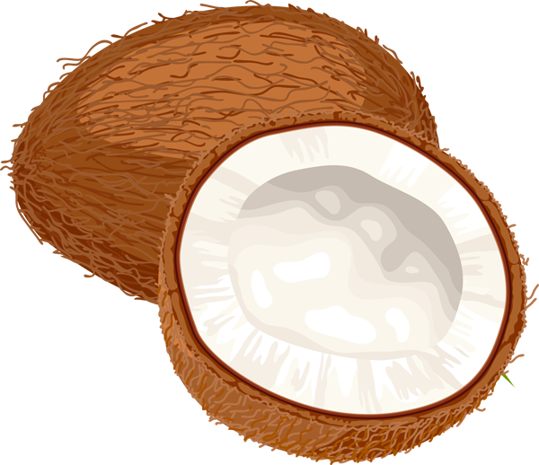 The running musician mint. Coconut clipart whole