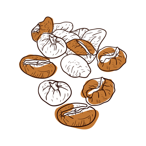 Hand drawn beans transparent. Coffee bean vector png