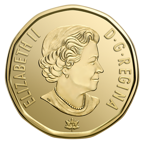 special wrap roll. Coin clipart loonie