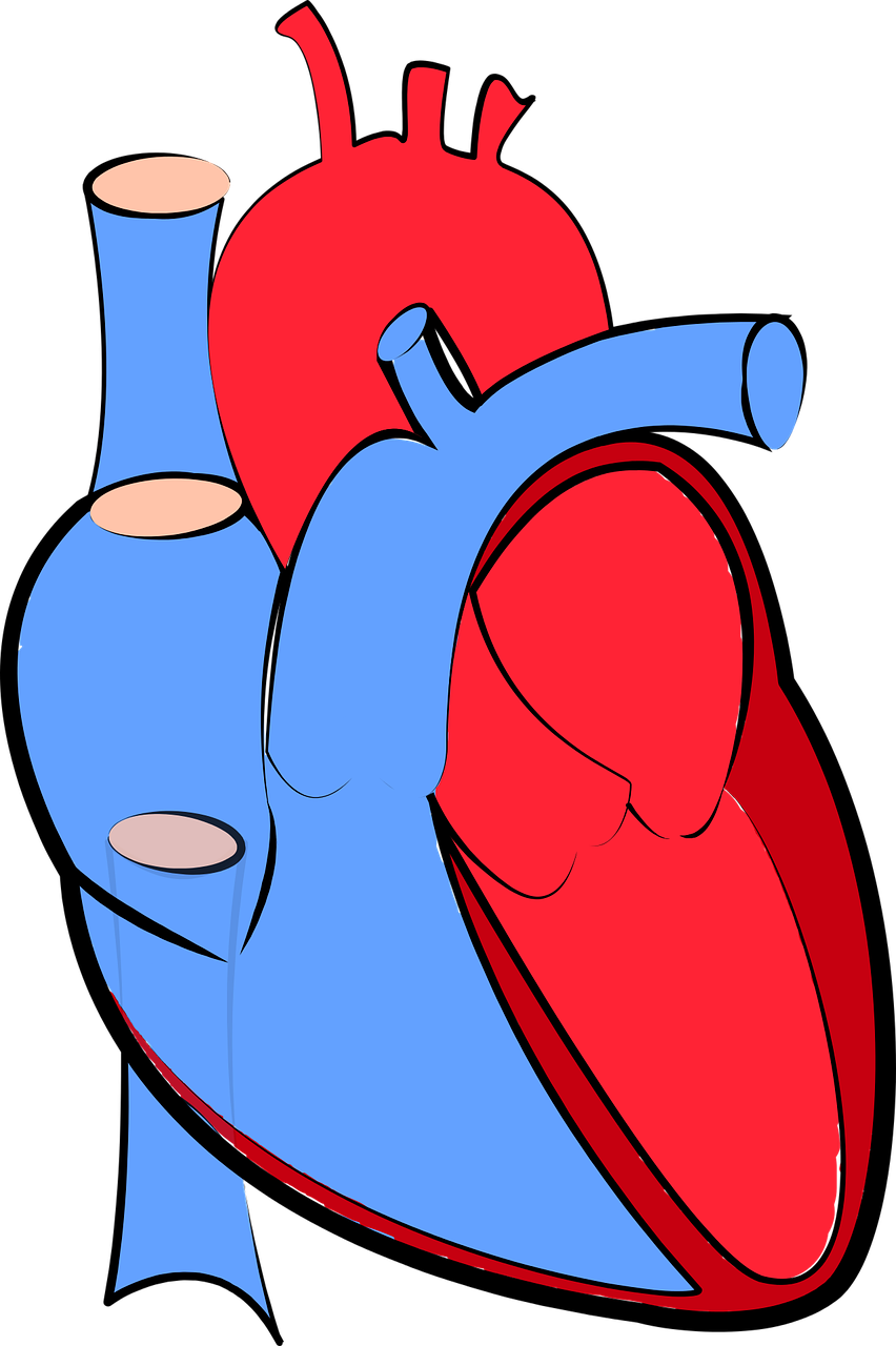 Cough clipart acute disease. Chest pain history the