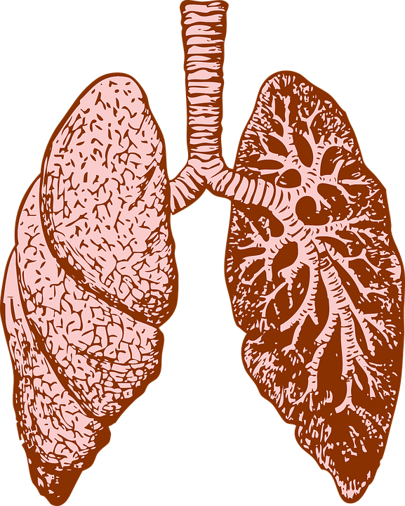 Tips for prevention of. Cough clipart respiratory problem