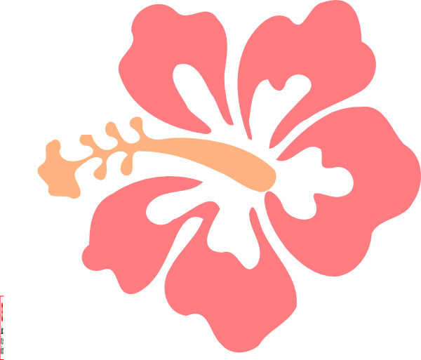 Color clipart coral. Hibiscus clip art at
