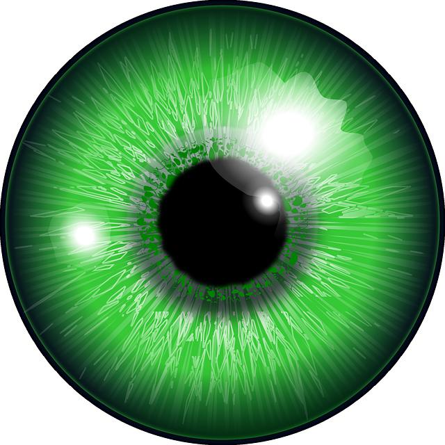 Eye color computer icons. Eyeballs clipart sight