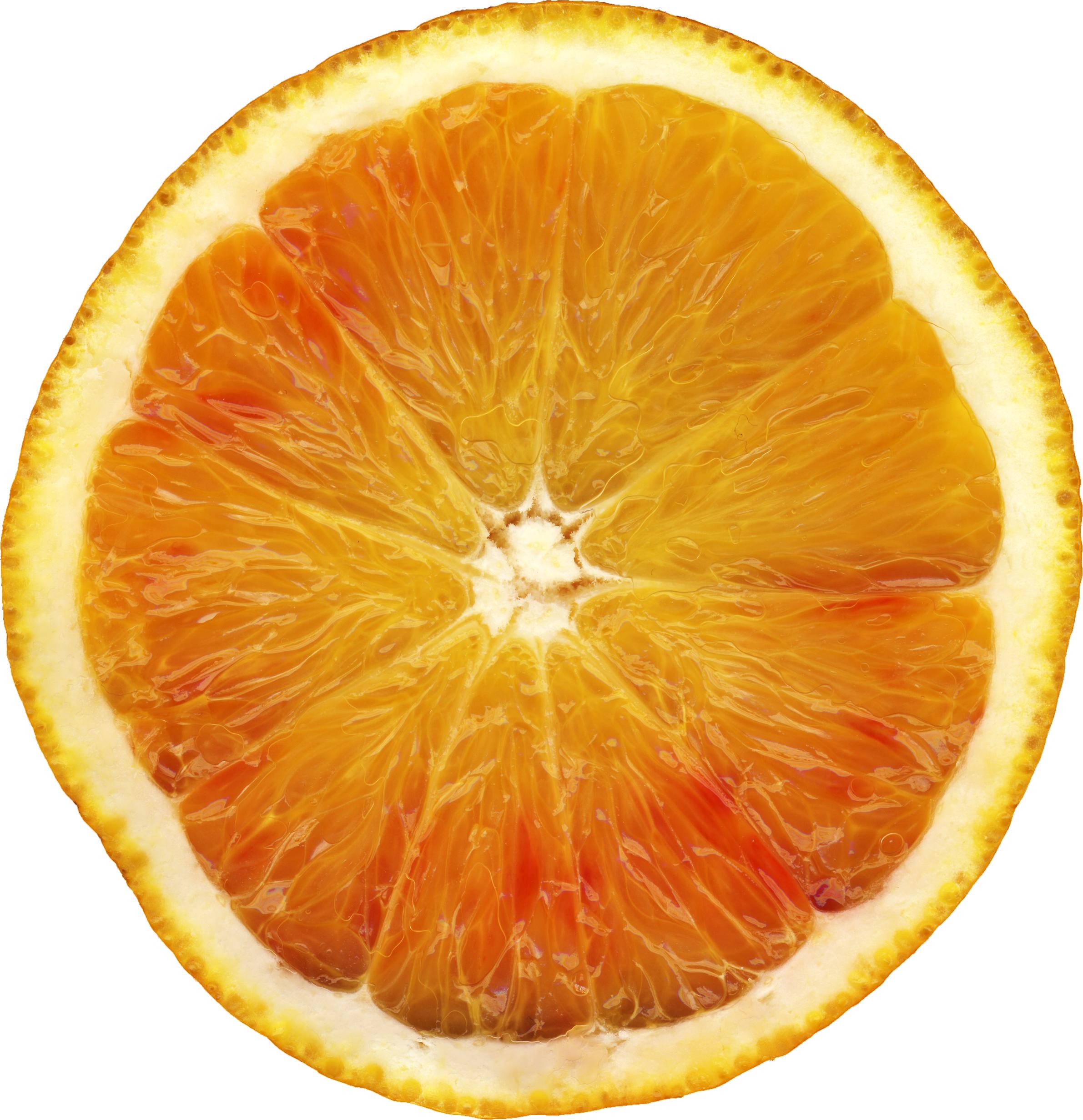 Orange orang pencil and. Fruit clipart silhouette