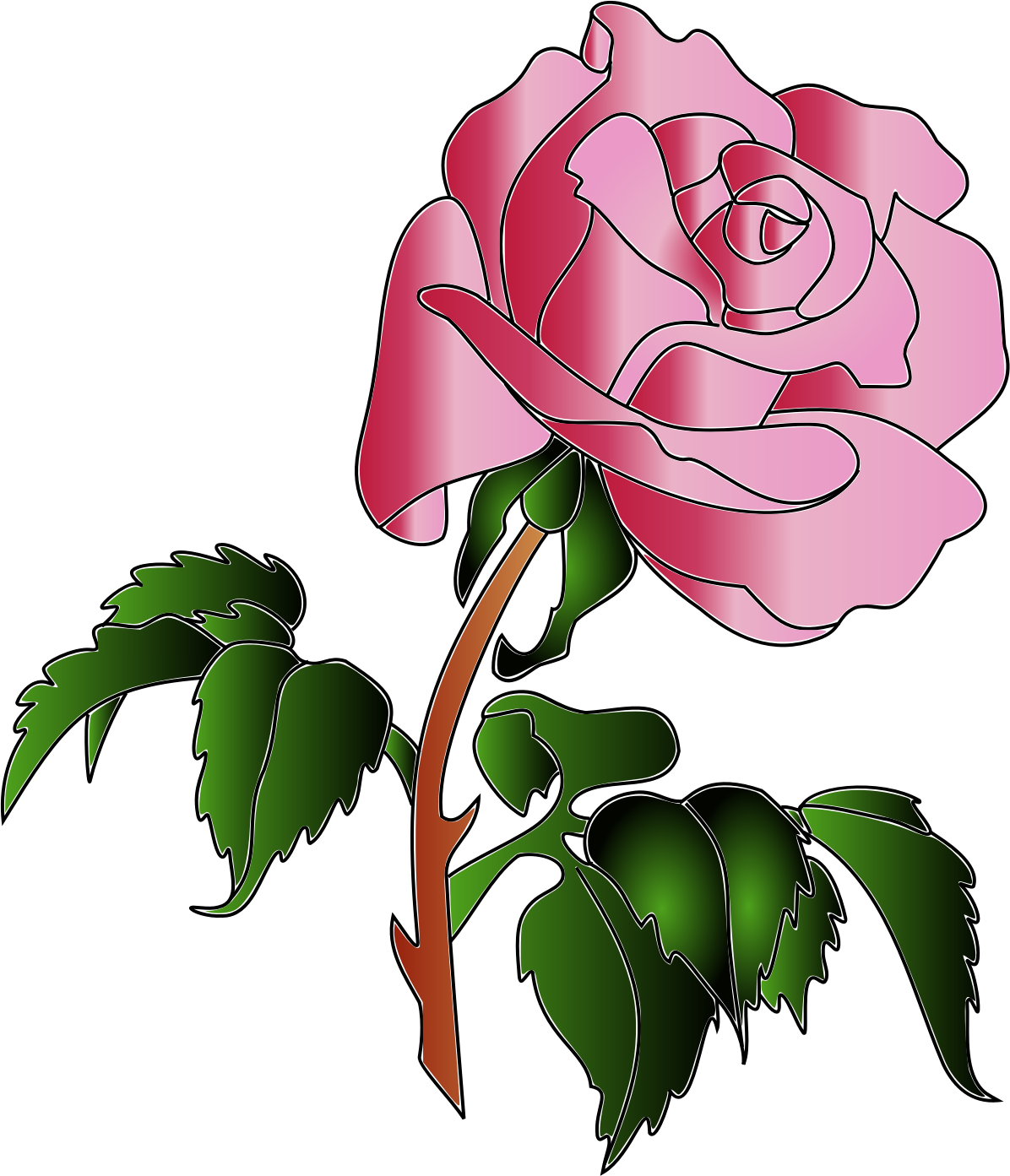 Colors big image png. Color clipart rose