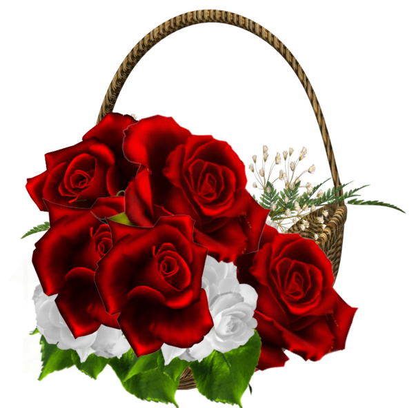 Red basket pencil and. Color clipart rose