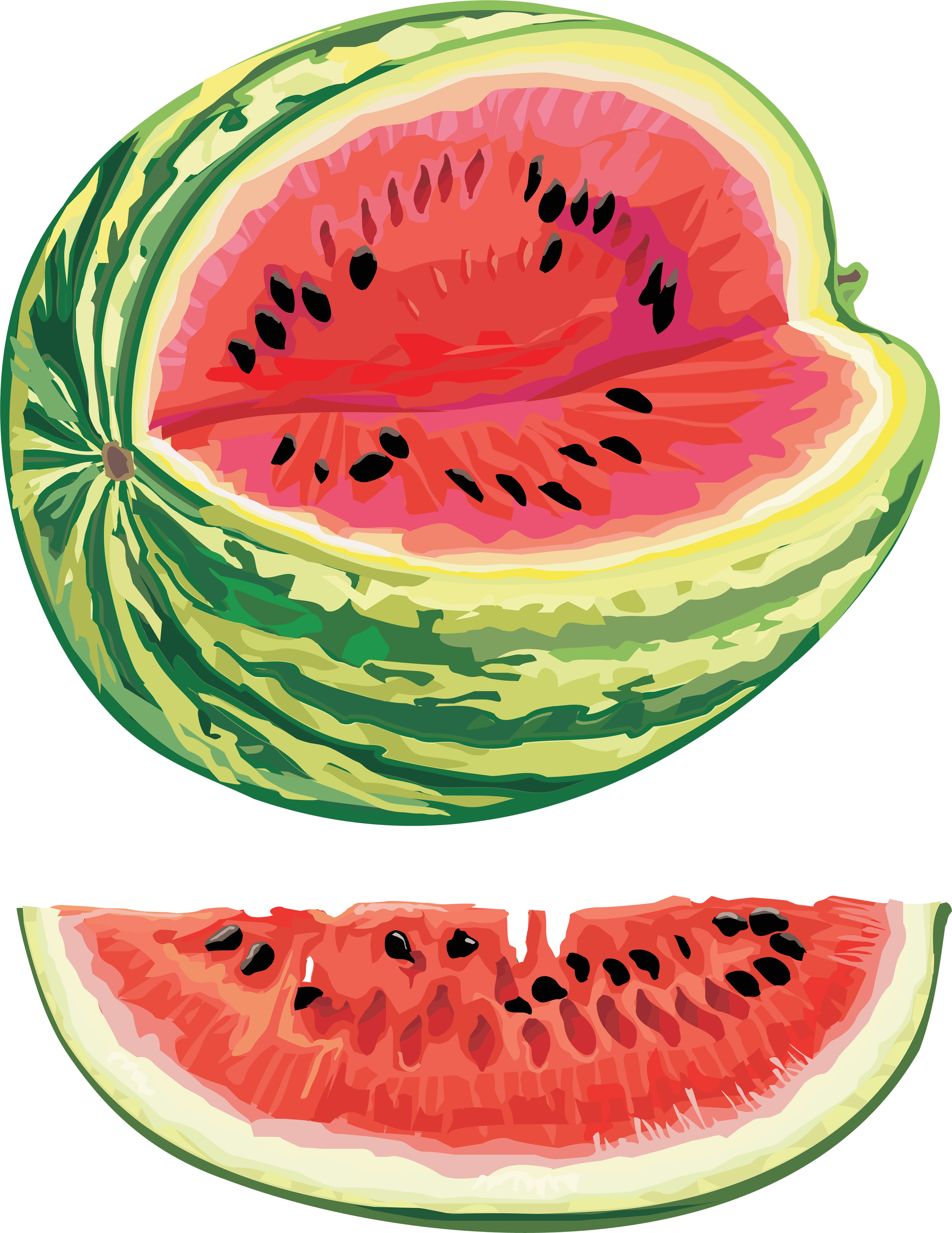 Watermelon clipart transparent background. Png image purepng free