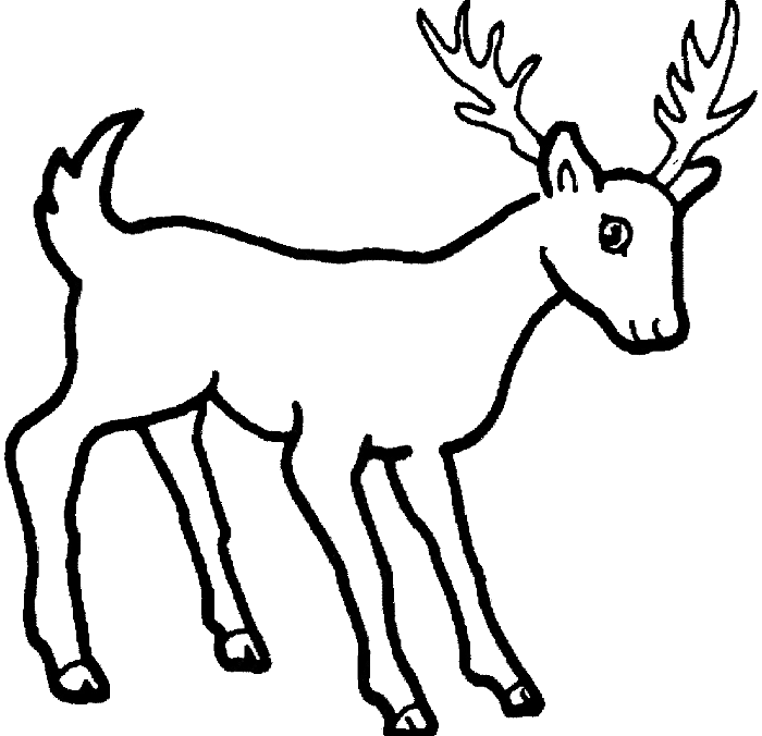Deer clipart drinking. Coloring page panda free