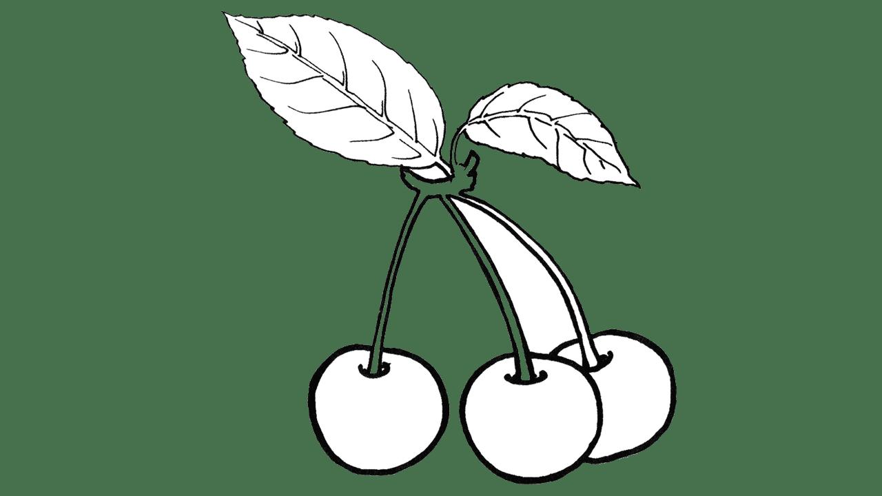 Pomegranate clipart black and white.  prodigious cherry free