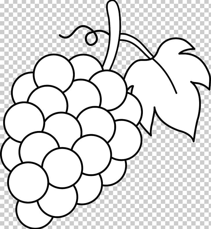 Grape clipart coloring. Common vine book leaves