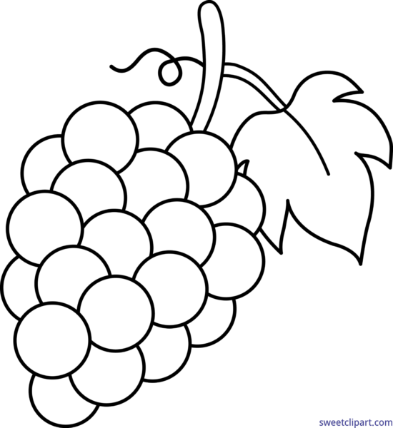 Coloring clipart grape. All clip art archives