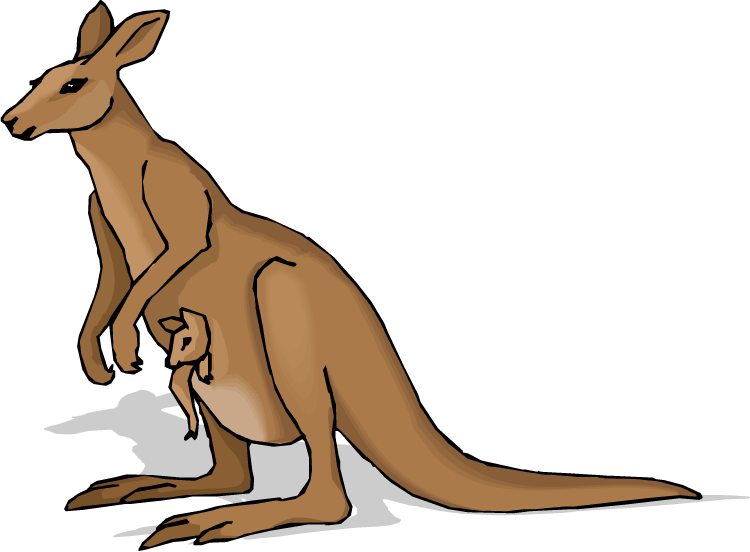 Hops clipart kangaroo. Free pictures of a