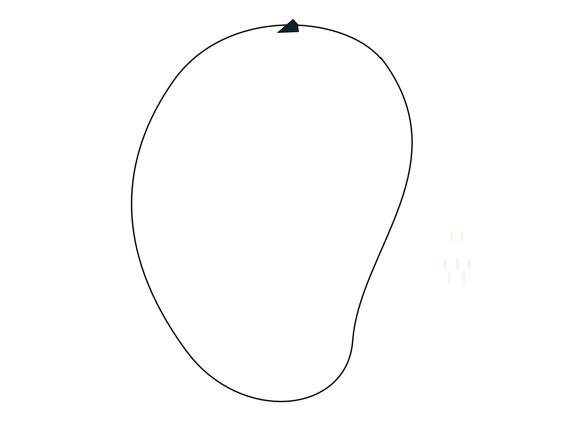 Mango Clipart Black And White