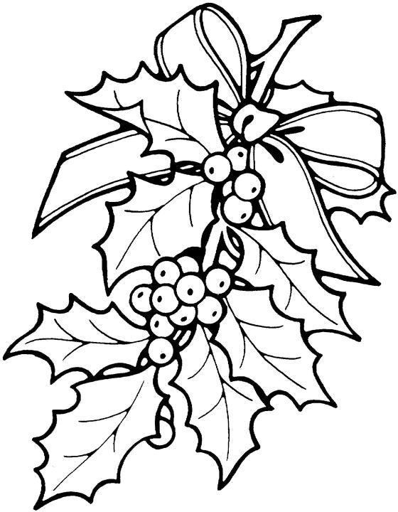 Ivy clipart holly and ivy. Printable christmas ornament patterns