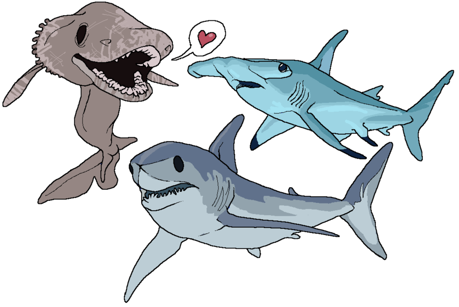 Free printable pages for. Coloring clipart shark