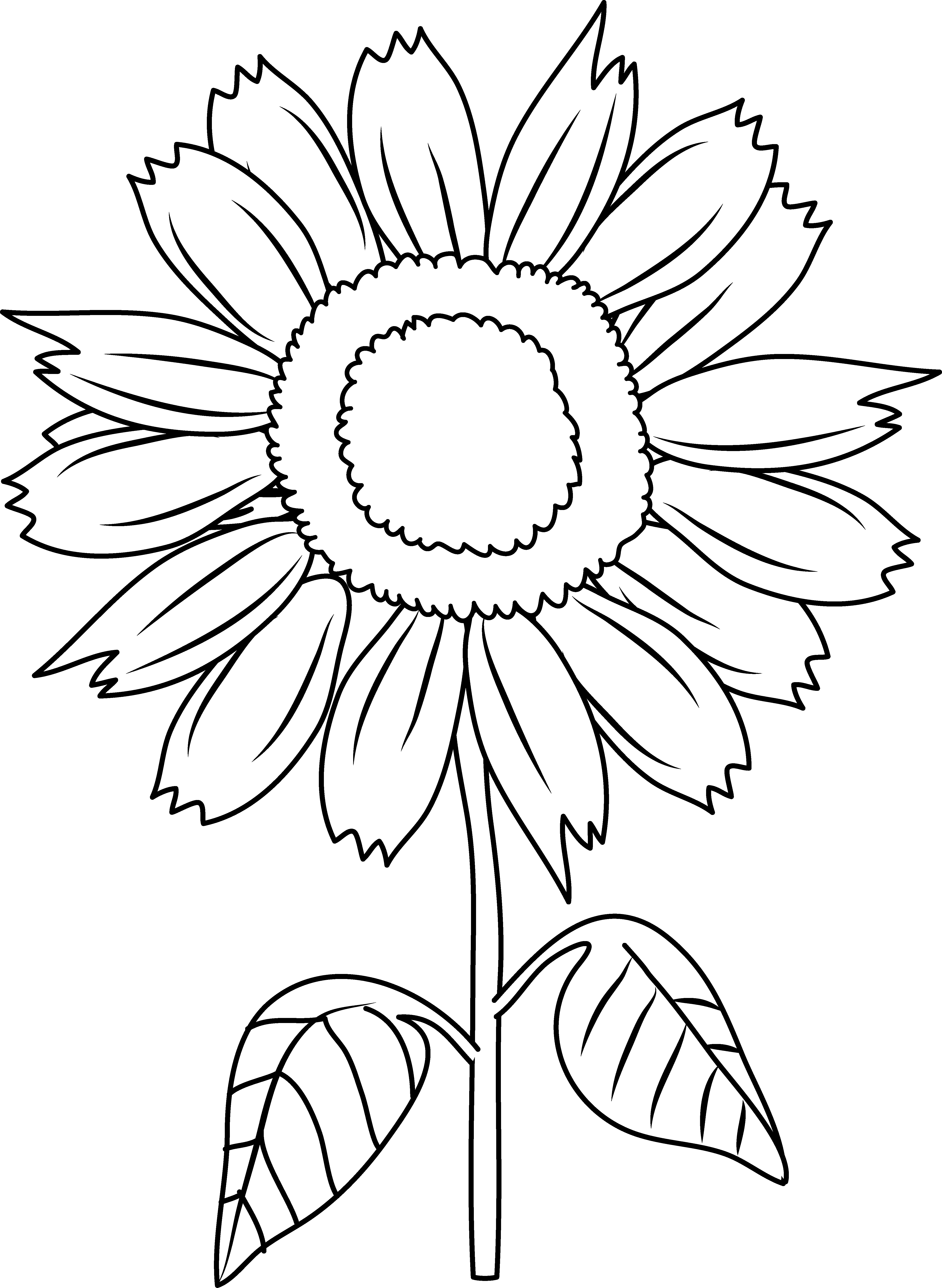 Black and white drawing. Coloring clipart sunflower