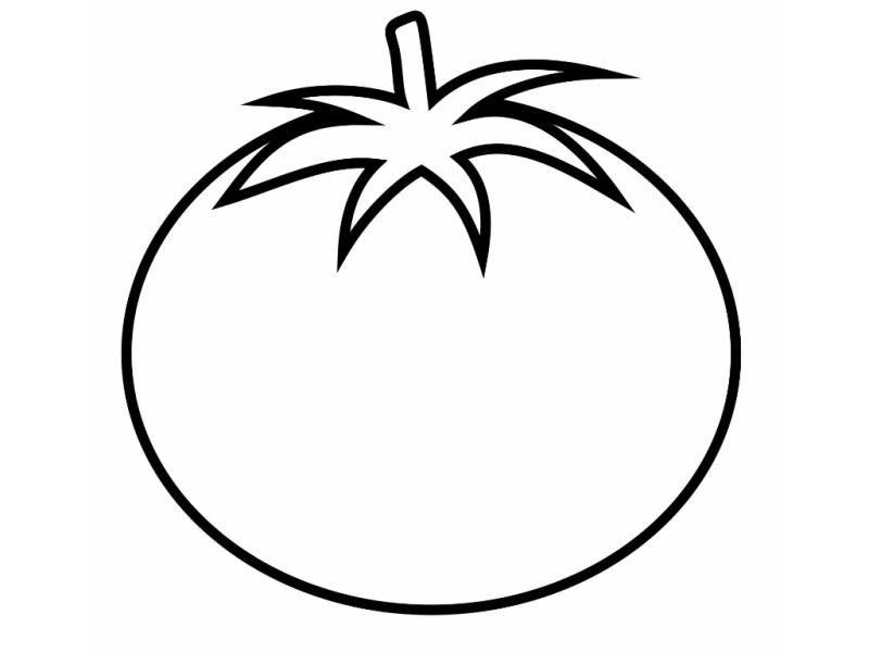 Tomato coloring page x. Tomatoes clipart colour
