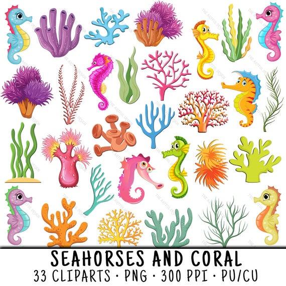 Seahorse png . Coral clipart clip art