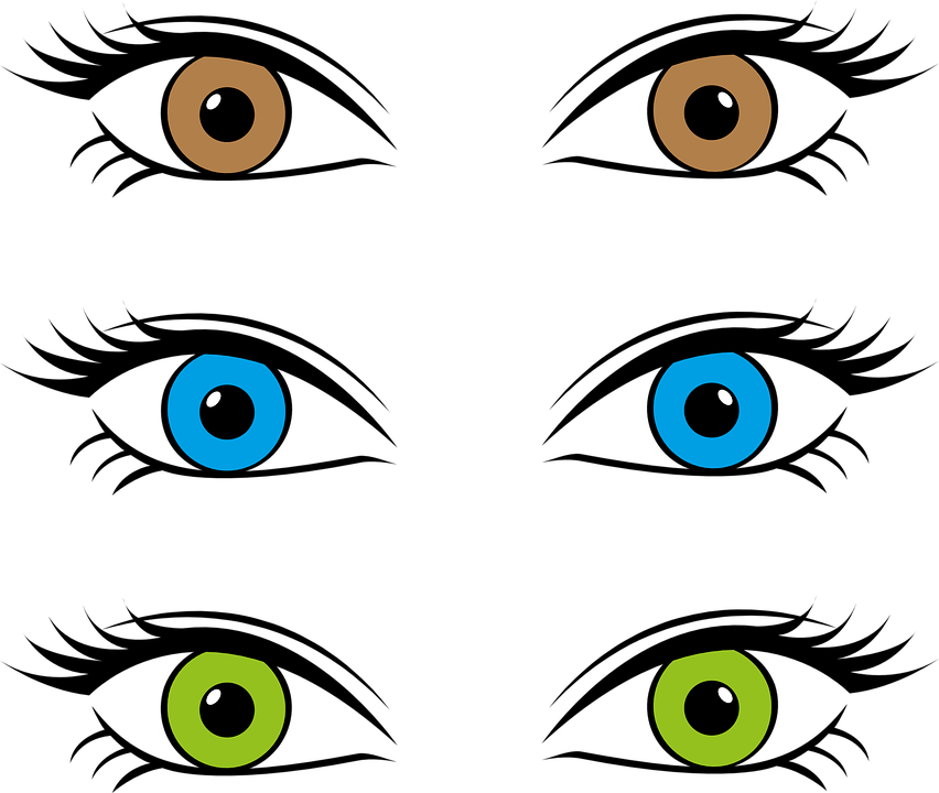 collection of eye. Eyeballs clipart colourful