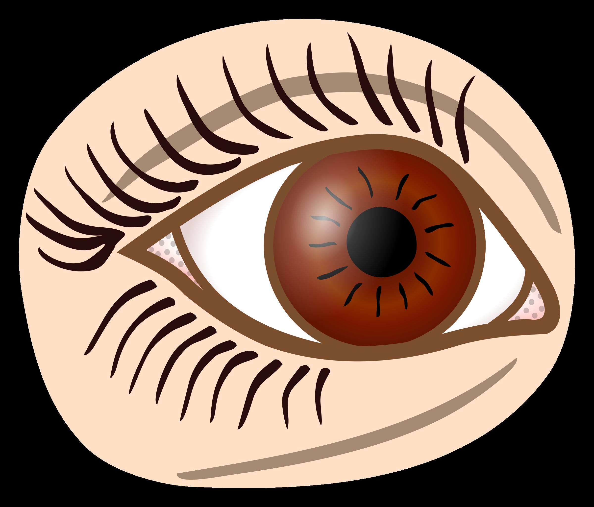 Eyelash clipart printable. Eye coloured icons png