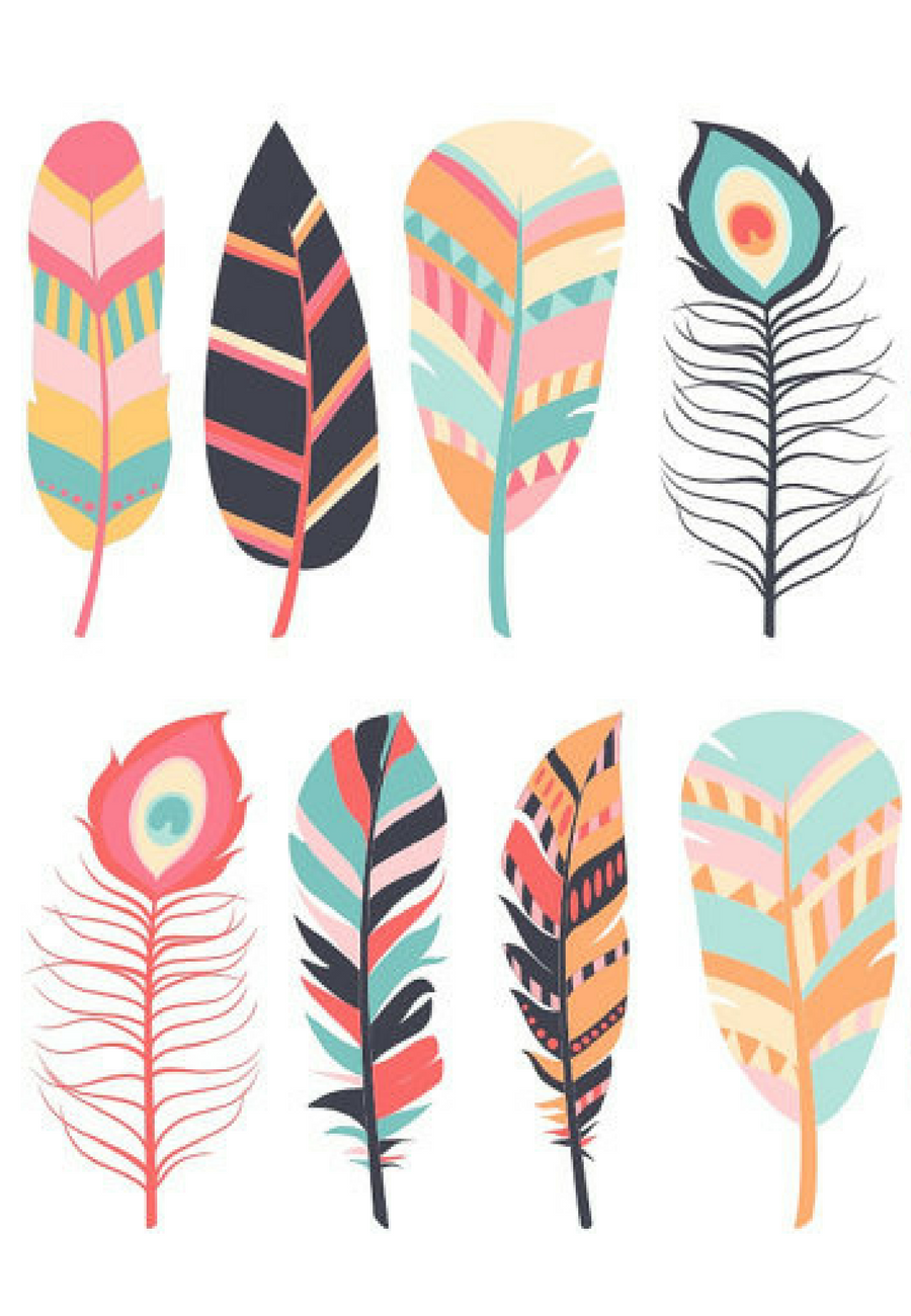 Digital feathers clip art. Feather clipart colourful feather