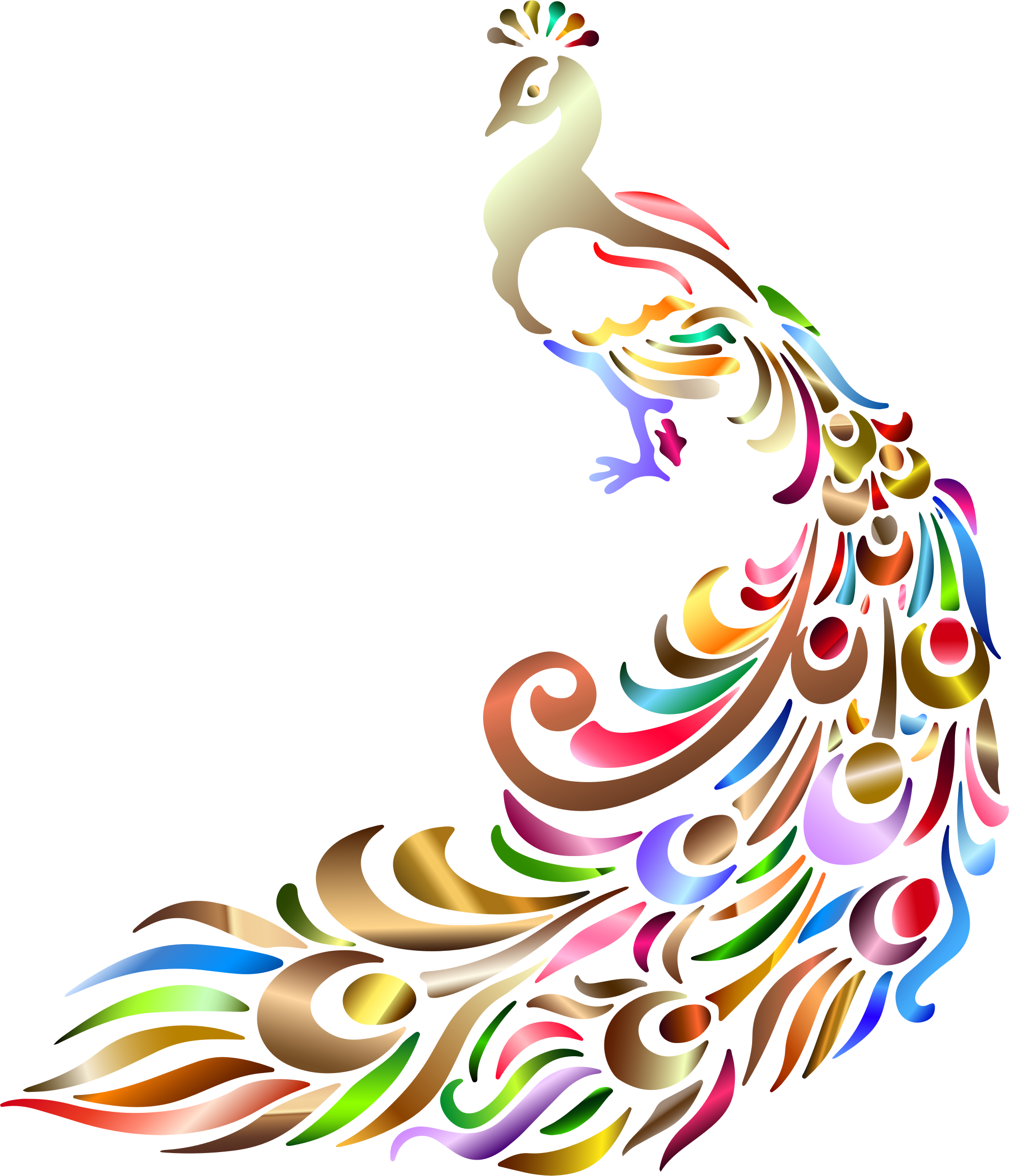 Peacock colored