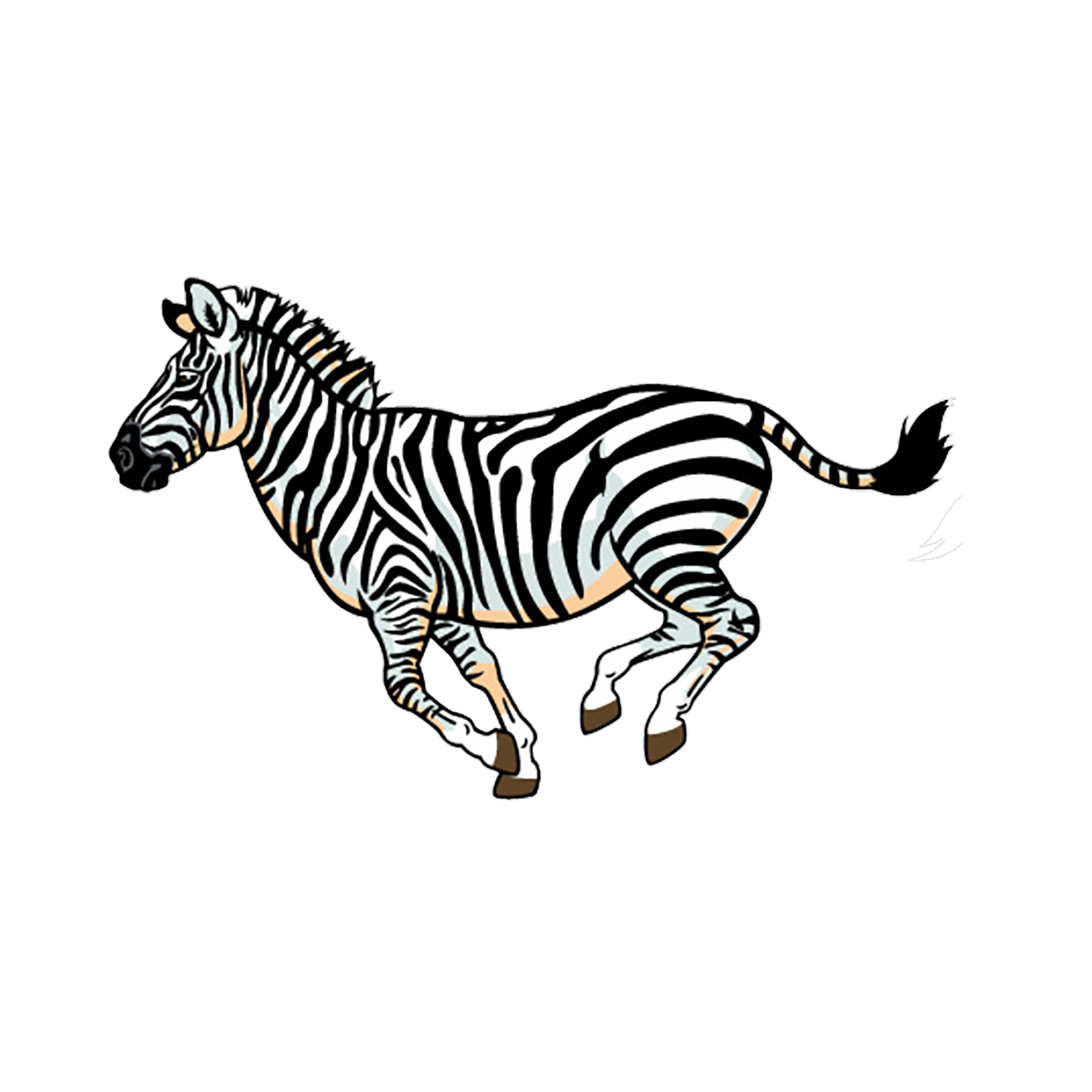 Wildlife lion full color. Colors clipart zebra