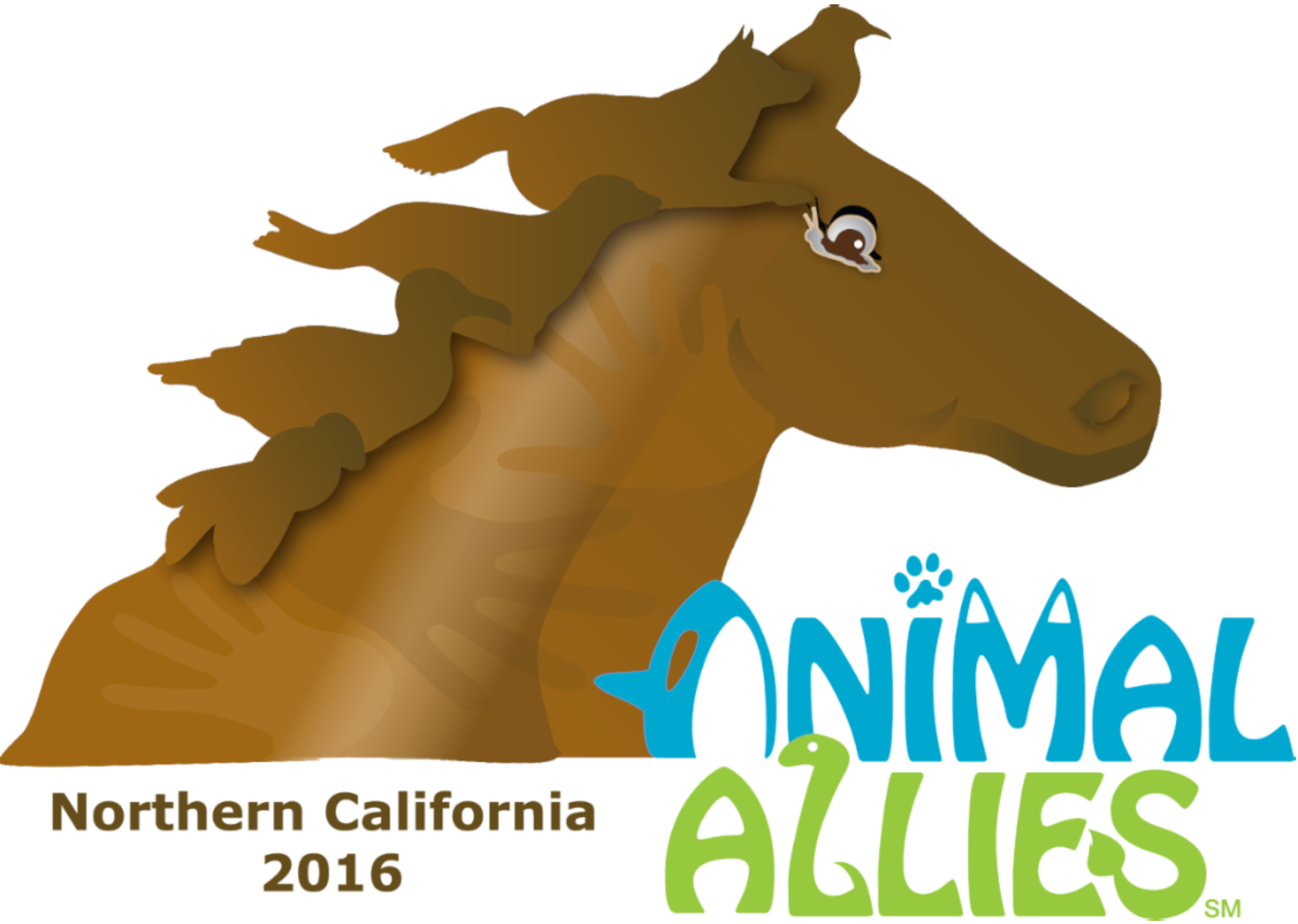 Evaporation clipart afternoon activity. Norcalfll animal allies