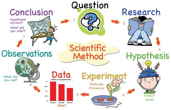 Pin by jennifer moyle. Hypothesis clipart scientific method hypothesis