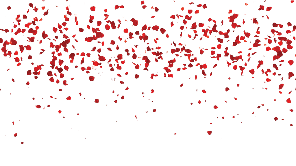 Falling rose leaves by. Free transparent png images