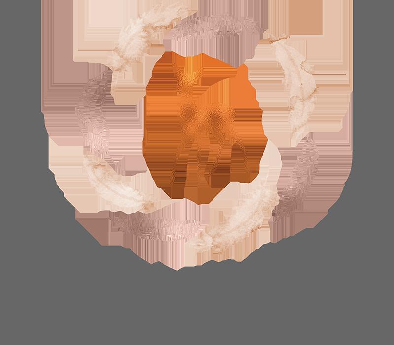 Catherine roy library of. Photographer clipart wildlife photographer