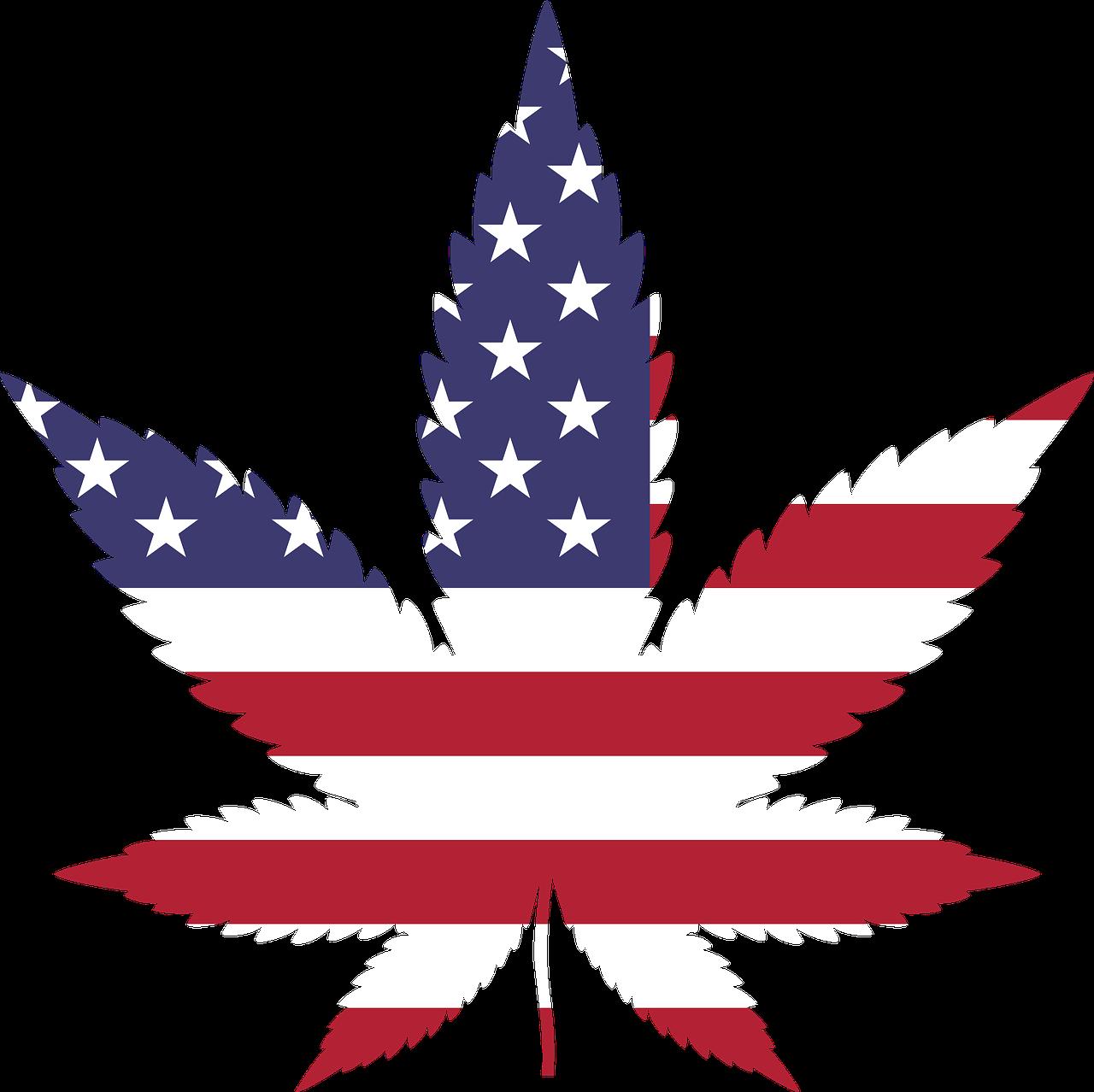 Pro legalization to target. Debate clipart congressman