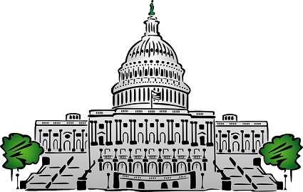 President clipart unicameral legislature. Difference between and bicameral