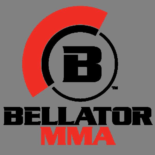 fight clipart mixed martial art