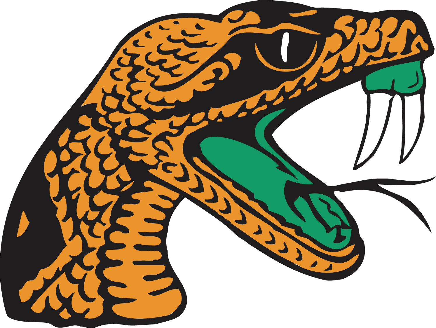 Famu vs bethune cookman. Wildcat clipart bcu