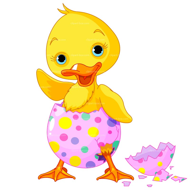 Duckling clipart cute. Free easter cliparts download