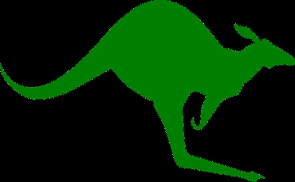Hug clipart kangaroo. Green pencil and in