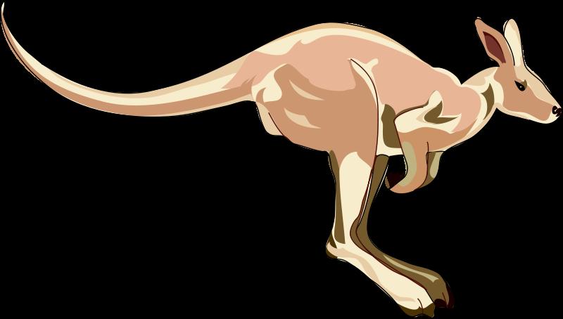 Kangaroo clipart zoo animal. Clip art royalty free