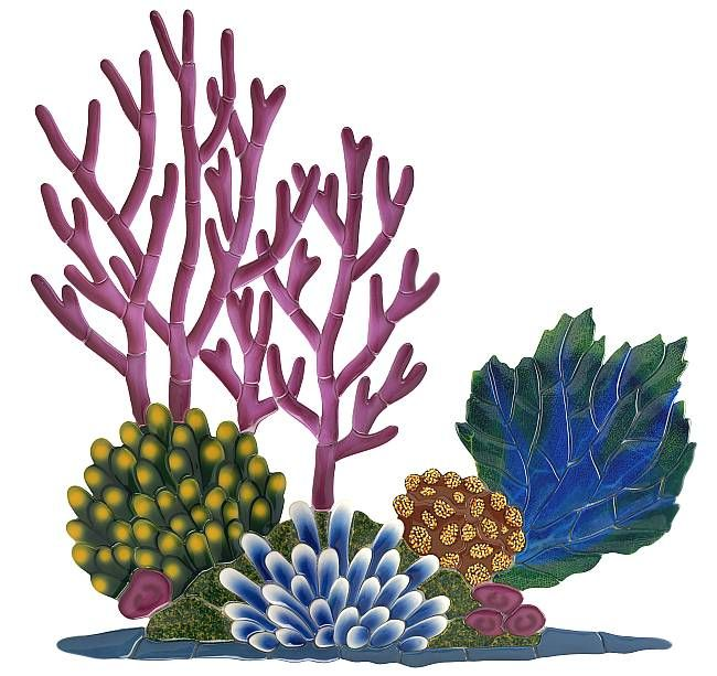 Coral clipart. This reef is perfect