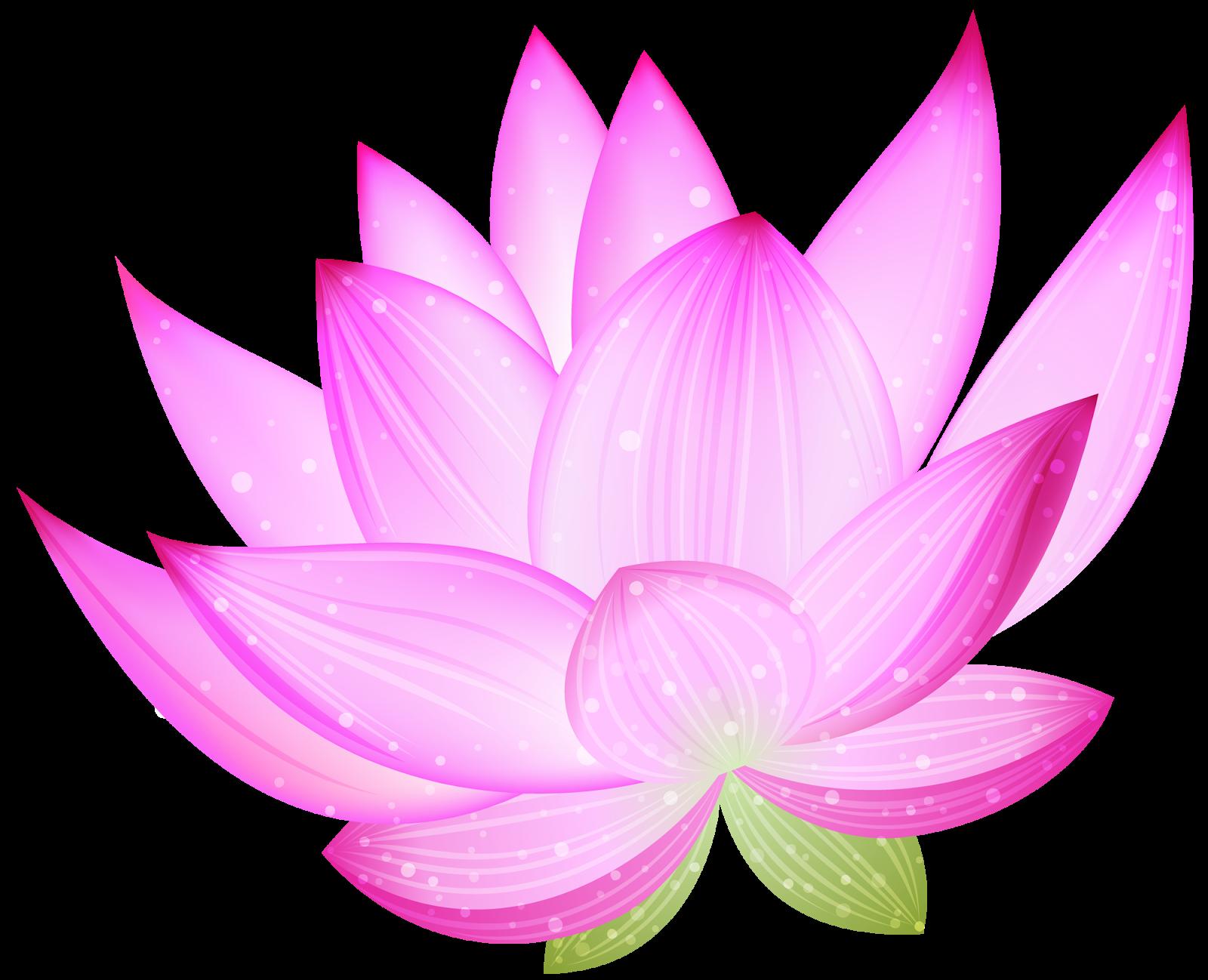Lotus clipart chakra. Png flores pesquisa google