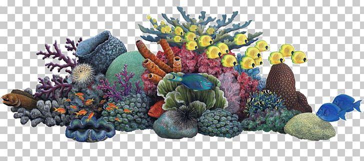 Coral clipart coral bleaching. Reef sea ocean png
