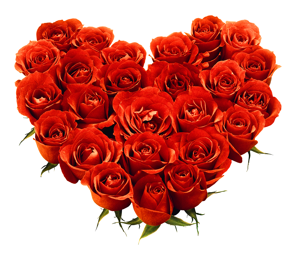Hearts clipart bouquet. Rose png flower images