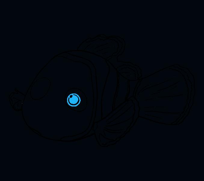 Goldfish clipart fish head. Drawing at getdrawings com